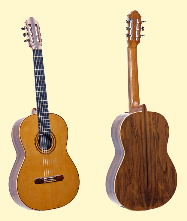 Front-and-Back_W_BACKGROUND-Guitar-Luthier-LuthierDB-Image-6